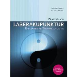 Praxisbuch Laserakupunktur Autoren; Volkmar Kreisel, Michael Weber
