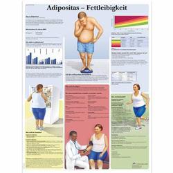 Lehrtafel - Adipositas - Fettleibigkeit