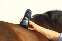 Softlaser B-Cure® VET PRO,  Laserdusche für Tiere / Bild 7