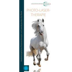 Flyer Lasertherapie Vet Pferd