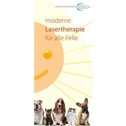Flyer Lasertherapie Vet Kleintier, DE