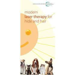 Flyer Laser Therapy and Laser Acupuncture Vet Small animals, English
